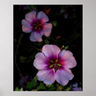 Flower power 2 póster
