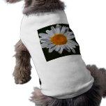 Flower power de la margarita camiseta sin mangas para perro