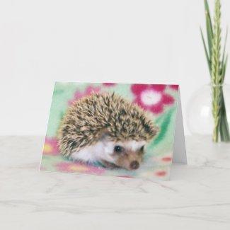 Flower Power Hedgehog Cards card
