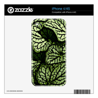 Flower Power in Green and Brown Decals For iPhone 4