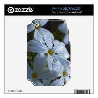 Flower Power Iphone 3gs Skin