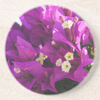 Flower Power & Nature Coaster - Bougainvillea