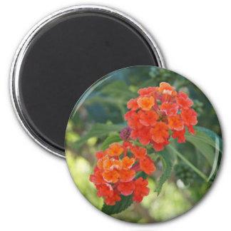 Flower Power Nature Magnet - Red Lantanas