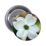 Flower power pinback button