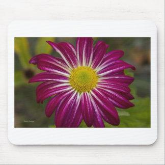 Flower power púrpura del aster alfombrilla de ratones