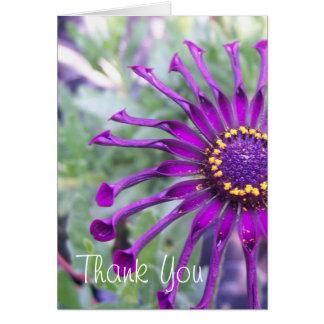 Flower Power Spider Purple Flower Notecard