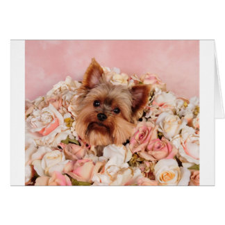 Flower pup cards