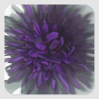 flower purple square sticker