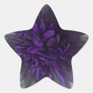 flower purple star sticker