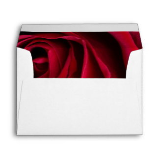 Flower Red Rose Envelope