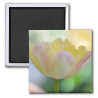Flower Refrigerator Magnet - Yellow, Pink, & White