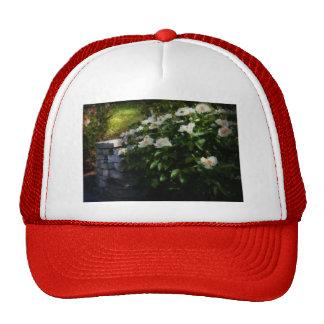 Flower - Rose - By a wall Trucker Hat