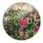 Flower Round Cabinet Knob