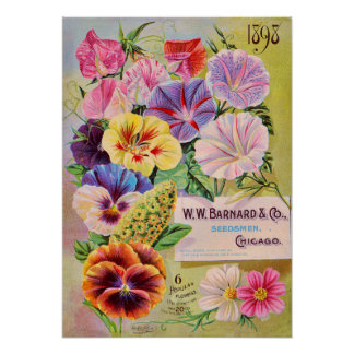 Flower Seed Catalog Vintage Advertisement Poster