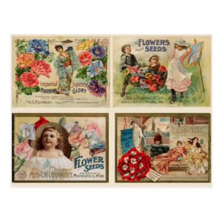Flower Seeds Vintage Collage Postcard