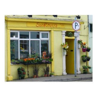 Flower shop in Birr - Ireland Postcard
