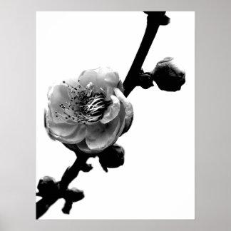 Flower Silhouette Print