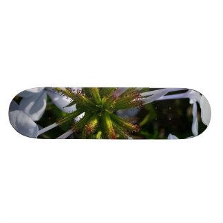 Flower Skateboards