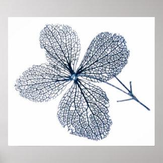 Flower Skeleton ~ print
