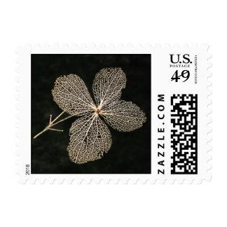 Flower Skeleton ~ stamp