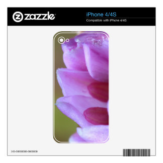 Flower Decals For iPhone 4S