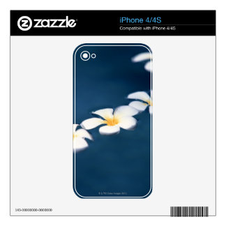 Flower Skins For iPhone 4