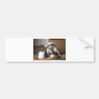 Flower Sniffing English Bull Bumper Sticker