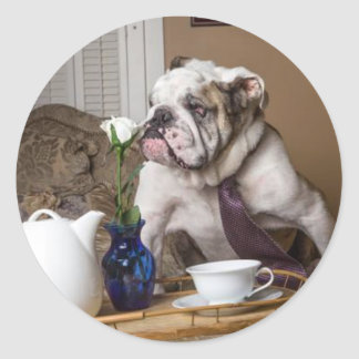 Flower Sniffing English Bull Classic Round Sticker