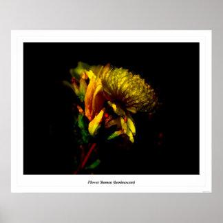 Flower Stamen (luminescent) Poster