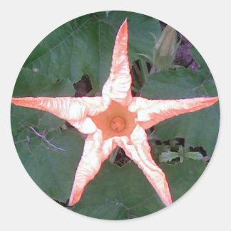 Flower Star Classic Round Sticker