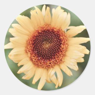 Flower Sticker, Oval/Glossy/Circular Classic Round Sticker