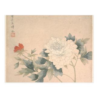 Flower Study - Yun Bing (Chinese) Postcard