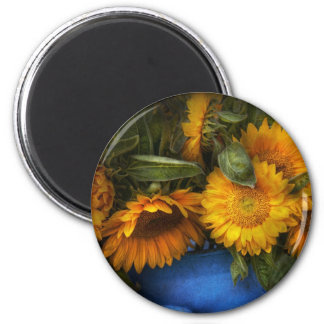 Flower - Sunflower - The suns have risen Magnets
