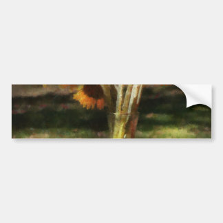 Flower - Sunflower - Vase of Sunshine Bumper Sticker