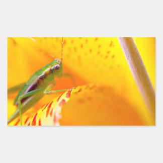 flower surfer rectangular sticker