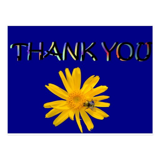 flower thank you.png post cards