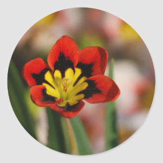 Flower to be cherished classic round sticker