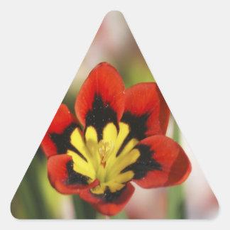 Flower to be cherished triangle sticker
