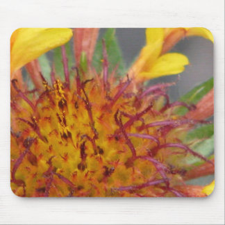 Flower Up-Close Mouse Pad