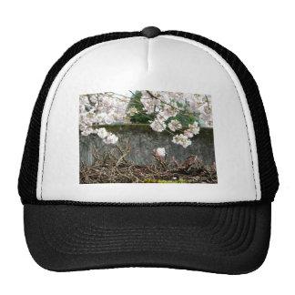 Flower Wall Trucker Hat