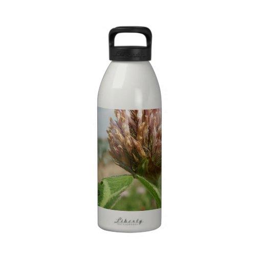 flower reusable water bottles