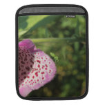 Flower with Small Green Insect. Sleeve For iPads