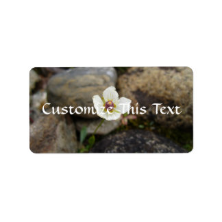 Flower with Soft Rock Background; Mailing Products Label