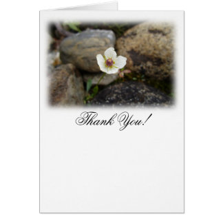 Flower with Soft Rock Background; Thank You Card
