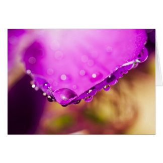 Flower with Water Drop Card