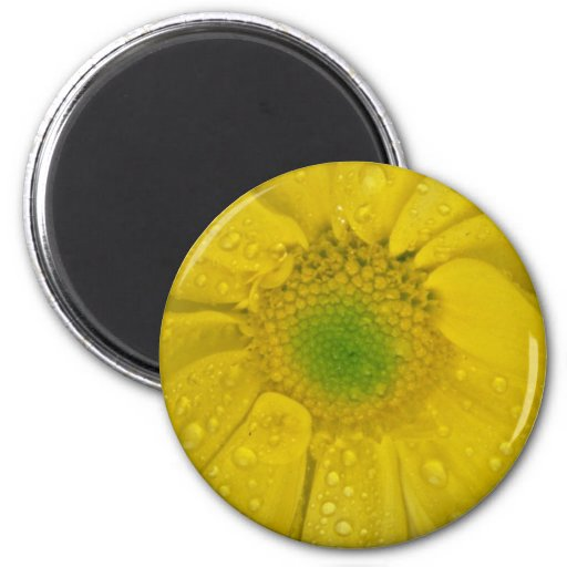 Flower yellow flowers 2 inch round magnet
