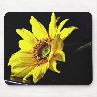 Flower Yellow Macro Photo Mouse Pads