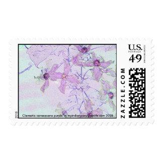 flowerart2, púrpura del caracasana del Clematis Sellos