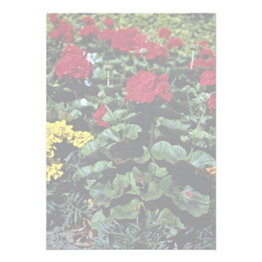 Flowerbed Invite