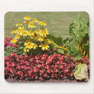 Flowerbed of coneflowers and begonias mouse pad